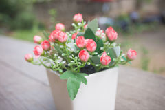 Flores rosadas hermosas en pote en fondo de la naturaleza foto de archivo libre de regalías