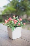 Flores rosadas hermosas en pote en fondo de la naturaleza fotos de archivo libres de regalías
