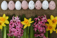 Flores rosadas y amarillas de la primavera, huevos coloreados, pascua domingo Fotos de archivo libres de regalías