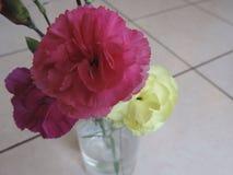 Flores rosadas y amarillas en florero foto de archivo libre de regalías
