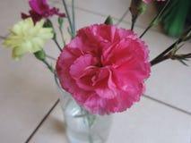 Flores rosadas y amarillas en florero fotografía de archivo
