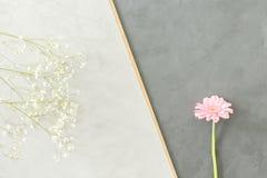 Flores rosadas y blancas imagenes de archivo