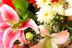 Flores rosadas y blancas imagen de archivo libre de regalías