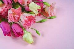 Flores rosadas y blancas en el fondo rosa claro, disposición con el espacio del texto libre, concepto de la tarjeta de felicitaci Foto de archivo