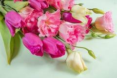 Flores rosadas y blancas en el fondo verde claro, concepto de la tarjeta de felicitación Fotos de archivo libres de regalías