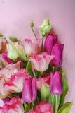 Flores rosadas y blancas en el fondo verde claro, concepto de la tarjeta de felicitación Imágenes de archivo libres de regalías