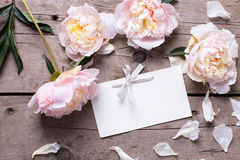 Flores rosadas y Empty tag de las peonías en fondo de madera envejecido imagen de archivo libre de regalías