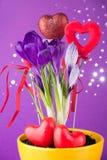 Flores roxas do açafrão Foto de Stock