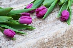Flores roxas frescas da tulipa na tabela de madeira Fotografia de Stock Royalty Free