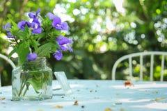 Flores roxas na tabela de madeira branca imagens de stock royalty free