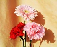 Flores, símbolo de la pureza foto de archivo