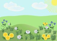 Flores salvajes en el claro Foto de archivo