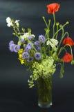 Flores salvajes en el negro Imagen de archivo libre de regalías