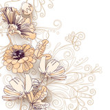 Flores salvajes en un blanco Imagen de archivo