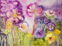 Flores salvajes en un fondo rosado Imagen de archivo