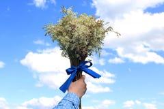 Flores salvajes vendadas con una cinta de satén contra la perspectiva de un cielo azul del verano Imágenes de archivo libres de regalías