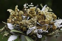 Flores secadas Fotografía de archivo