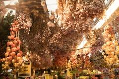Flores secadas colgantes del techo Fotos de archivo libres de regalías