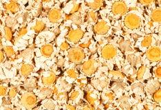 Flores secadas da camomila Imagens de Stock Royalty Free