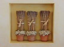 Flores secadas de la lavanda en tres floreros Imagen de archivo libre de regalías
