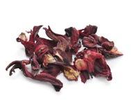Flores secadas del hibisco Imagenes de archivo