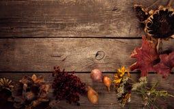Flores secadas en una acción de gracias de madera aún L del otoño del fondo Imagen de archivo libre de regalías