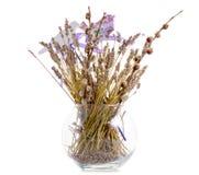 Flores secadas en una decoración del florero Imagen de archivo libre de regalías
