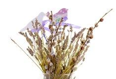 Flores secadas en una decoración del florero Fotografía de archivo