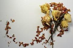 Flores secadas en una tabla blanca Imagen de archivo