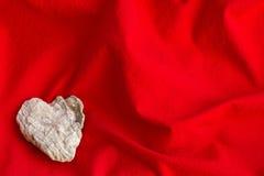 Flores secas Fotografía de archivo libre de regalías