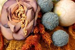 Flores secas fotos de stock royalty free