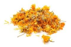Flores secas do chá do cravo-de-defunto Imagens de Stock Royalty Free