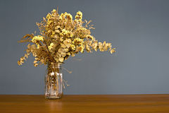 Flores secas no vaso de vidro Fotos de Stock Royalty Free