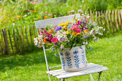 Flores selvagens coloridas Fotos de Stock