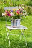 Flores selvagens coloridas do verão Fotografia de Stock