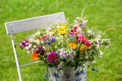Flores selvagens coloridas do verão Fotos de Stock Royalty Free