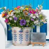 Flores selvagens coloridas do verão Imagem de Stock Royalty Free