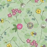Flores selvagens do prado no desenho a mão livre verde Imagens de Stock Royalty Free