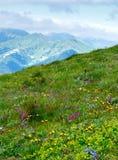 Montanha de Tatra do verão, Poland fotos de stock royalty free
