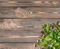 Flores selvagens no fundo de madeira de madeira do fundo Projete o cartão para a festa da trindade Imagens de Stock Royalty Free