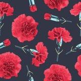 Flores sem emenda dos cravos do teste padrão Imagem de Stock