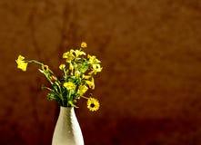 Flores simples da mola Fotografia de Stock
