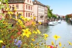 Flores sobre el río fotos de archivo libres de regalías