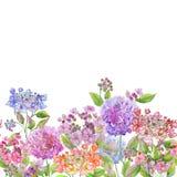 Flores suaves hermosas de la hortensia en el fondo blanco Modelo cuadrado Modelo floral inconsútil Pintura de la acuarela stock de ilustración
