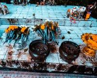 Flores Tailandia de ofrecimiento budista Foto de archivo