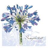 Flores, tarjeta de felicitación stock de ilustración