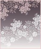 Flores, tarjeta de las rosas del cordón stock de ilustración