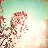 Flores Textured