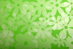 Flores Transluscent no verde Fotos de Stock Royalty Free