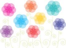 Flores transparentes coloridas Foto de Stock Royalty Free